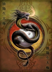 Ying Yang guardian