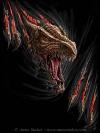 Dragon rip