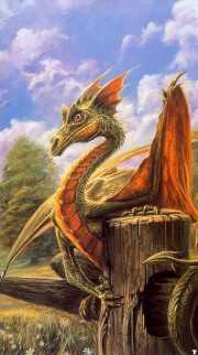 Northeasternfiled Dragon