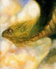 Quetzal coatl