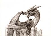 Dragonhenge drawing