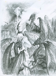 Multi Dragon Sketch