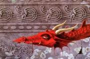 Red dragon profile