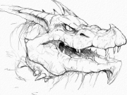 Red Dragon Headsketch