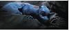 Kindchenschema bei Drachen